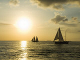 Sailboats at Sunset, Key West, Florida, USA Photographic Print by  R H Productions