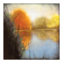 Autumn Marsh I Limited Edition by Mark St. John