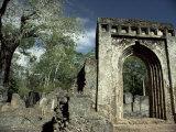 Gedi Ruins, Malindi, Kenya, East Africa, Africa Photographic Print by  Upperhall