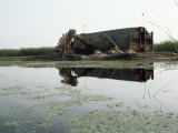 Mudhif (Guest House), Marshes, Iraq, Middle East Photographic Print