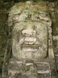 Mask 4M High, Structure P9-56, Lamanai, Belize, Central America Photographic Print by  Upperhall