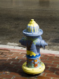 Painted Fire Hydrant, Key West, Florida, USA Photographic Print by  R H Productions