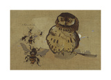 Owl And Bee Gicl&#233;e-Premiumdruck von Joseph Crawhall