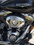 Harley Davidson Motorcycle, Key West, Florida, USA Photographic Print by  R H Productions