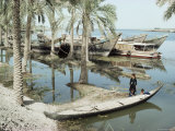 River Tigris, Near Qurna, Iraq, Middle East Photographic Print