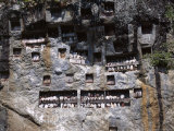 Effigies of the Dead Looking out from Lemo Cliff Tombs, Toraja Area, Island of Sulawesi, Indonesia Photographic Print by  R H Productions