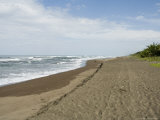 Tortuguero Beach, Caribbean Coast, Tortuguero National Park, Costa Rica, Central America, Photographic Print