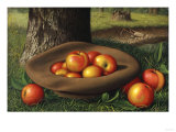 Apples in a Brown Hat Giclee Print by Thomas Birch