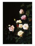 Roses, 1875 Prints by Soren Emil Carlsen
