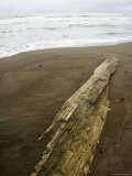 Tortuguero Beach, Caribbean Coast, Tortuguero National Park, Costa Rica, Central America Photographie par  R H Productions