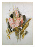 Hyacinth Giclee Print by Thomas Jones Barker