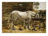 White Horse at the Drinking Trough, 1885-1890 Art by Eugène Boudin