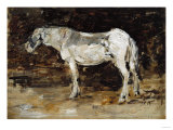 White Horse, Circa 1885-1890 Posters by Eugène Boudin