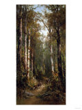 In the Forest, 1885 Giclee Print by Thomas Hill