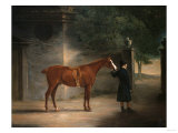 A Hunter and Groom in a Courtyard, 1816 Print by Henry Thomas Alken