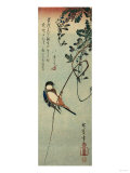 Swallow Perched on a Tendril of Wisteria Giclee Print by Okada Beisanjin