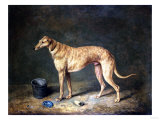 A Deerhound in a Stable Interior, 1817 Giclee Print by Henry Thomas Alken