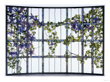 A &#39;Clematis&#39; Leaded Glass Three-Sectioned Skylight, Akron, Ohio, Circa 1915 Giclee Print by Maurice Bouval