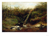 Ducks at a Brook, 1872 Giclee Print by Arthur Fitzwilliam Tait