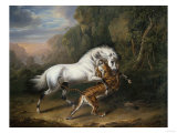 A Tiger Attacking an Arabian Stallion, 1824 Giclee Print by Giovanni Battista Benvenuti