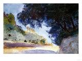 Landscape, Olive Trees, Corfu 1909 Poster by Eugène Boudin