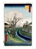 Cherry Blossoms, Tama River Embankment Reproduction procédé giclée par Ando Hiroshige