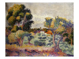 Eucalyptus and Olive Grove, 1907 Impression giclée par Mary Cassatt