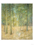 A Light in the Forest Premium Giclee Print by Soren Emil Carlsen