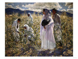 Indian Corn, Taos Giclee Print by Emilio Boggio