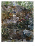Woodland Stream Prints by Eugène Boudin