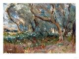 Landscape, Corfu, 1909 Giclee Print by Eugène Boudin