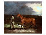 Ispwell Lass, 1805 Giclee Print by Giovanni Battista Benvenuti