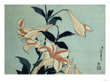 Trompetenlilien Poster von Hashiguchi Goyo