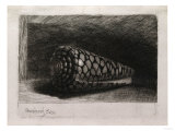 The Shell (Conus Marmoreus), Engraving and Drypoint on Paper, 1650 Poster by Filipo Or Frederico Bartolini
