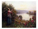 A Pet Rosebush Giclee Print by Jean-Baptiste-Camille Corot