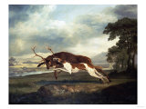 A Hound Attacking a Stag, 1769 Art by Herri Met De Bles