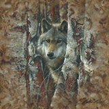 Woodland Spirit Print by Collin Bogle