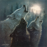 In harmonie, huilende wolven Poster van Collin Bogle