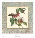 Bel Air Songbirds I Prints by Zachary Alexander