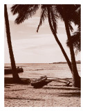Hawaiian Outrigger Canoe Poster