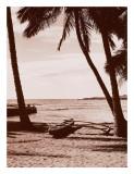 Hawaiian Outrigger Canoe Poster
