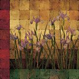 Iris Garden Poster by Marcia Wells