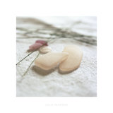 Pink Sea Glass Print by Celia Pearson
