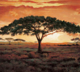 Masai Tree Prints by  Madou