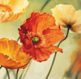 Champs de Coquelicots II Prints by Pierre Viollet