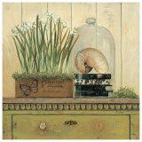 Vintage Garden II Print by Arnie Fisk