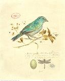 Gilded Songbird I Kunst af Chad Barrett