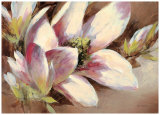Magnolia Breeze Prints by Brent Heighton