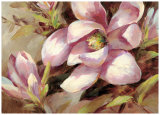 Magnolia Whisper Poster by Brent Heighton
