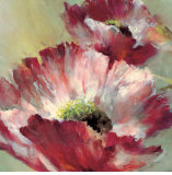 Lush Poppy Posters by Brent Heighton